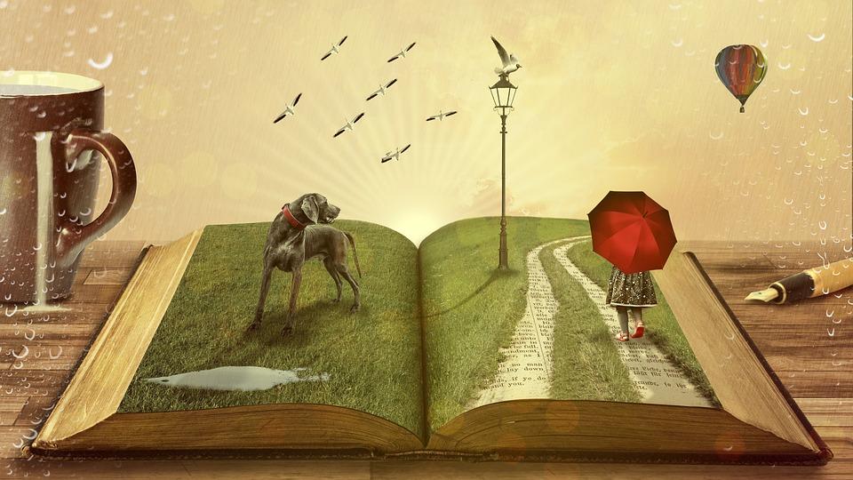 Развиваемая от чтения фантазия трансформируется в возможности в электронной коммерции в интернете